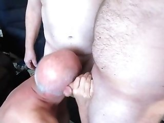 Horny Fag Cd Services Two Draped Boners